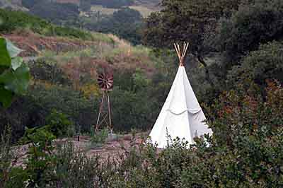 A teepee amid the native landscape