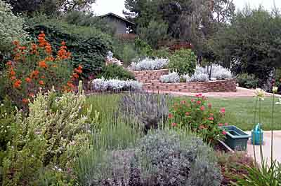 Herbs, lawn, and vegetable garden were planted in the higher water zone