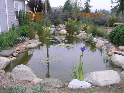 Rock-lined pond